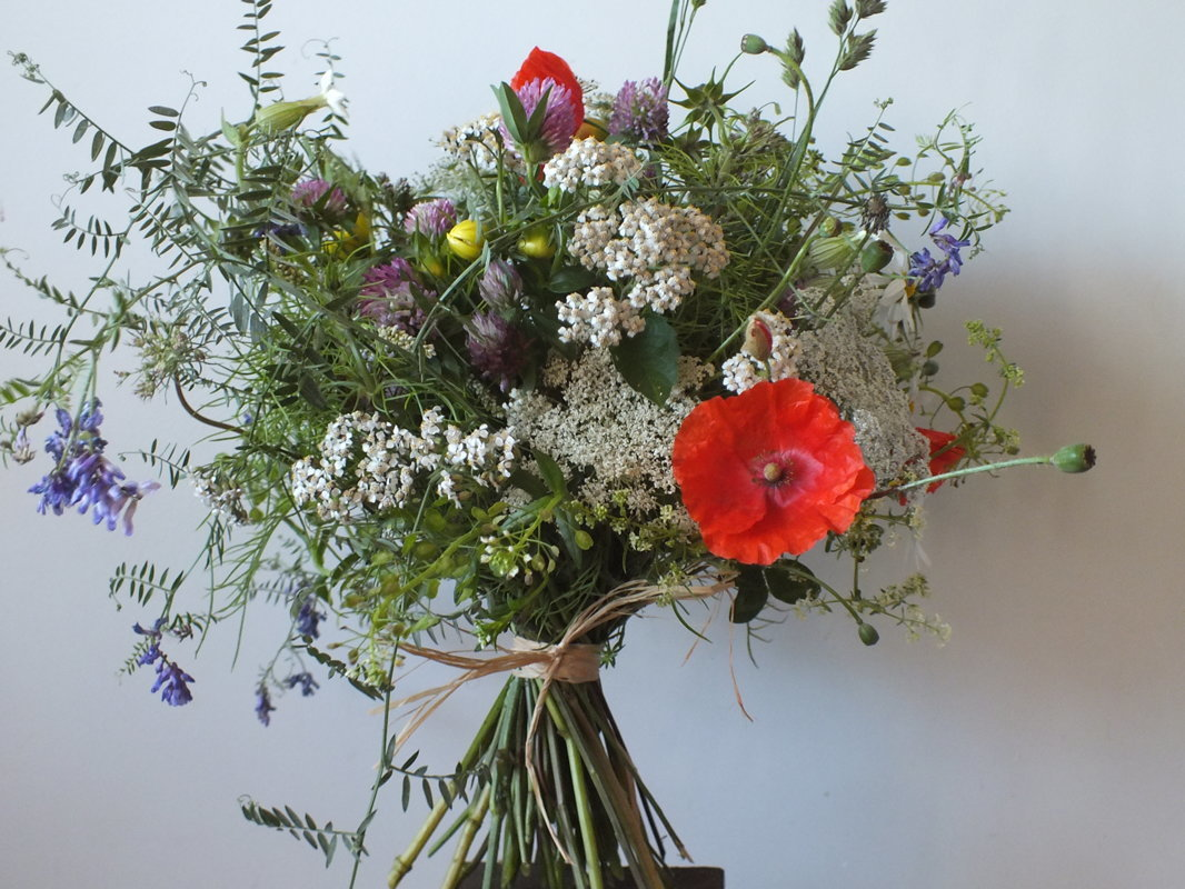 Margaspalvė lauko gėlių puokštė