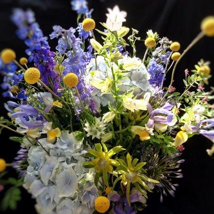 Pievų gėlių